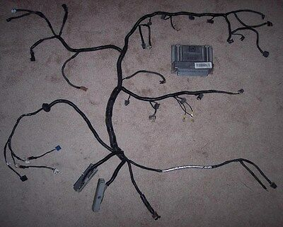 Standalone Wiring Harness rewire and Pcm tune included LS1