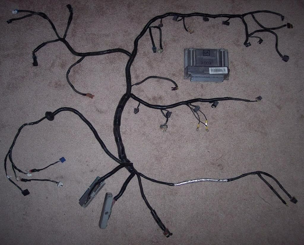 Standalone Wiring Harness rewire and Pcm tune included LS1 LSX 4.8 5.3L 5.7  6.0L For Sale